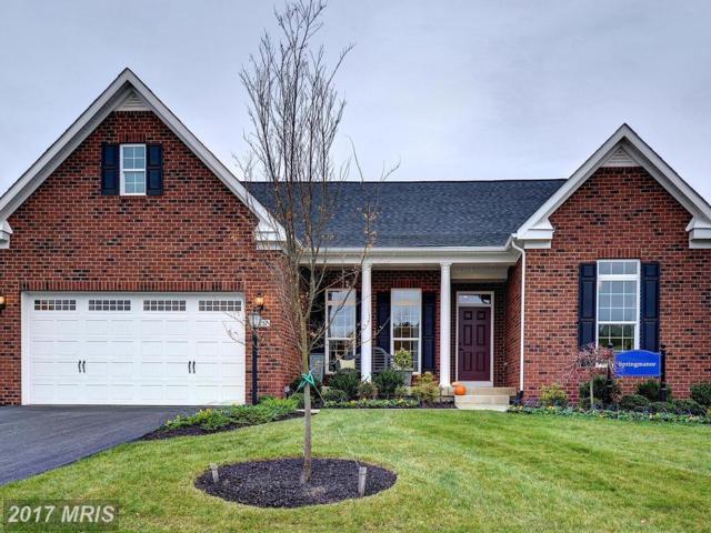 4 Hermitage Drive, Fredericksburg, VA 22407 (#SP10027522) :: Pearson Smith Realty