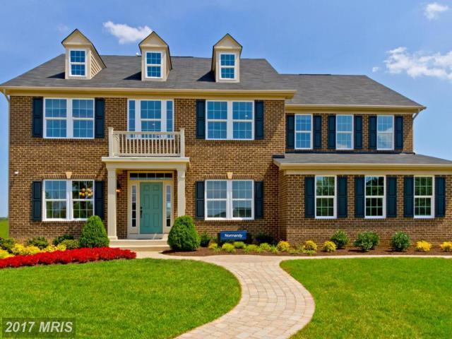 7 Hermitage Drive, Fredericksburg, VA 22407 (#SP10027554) :: Pearson Smith Realty