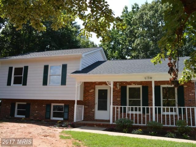 6804 Greenvale Road, Fredericksburg, VA 22407 (#SP10028111) :: Pearson Smith Realty