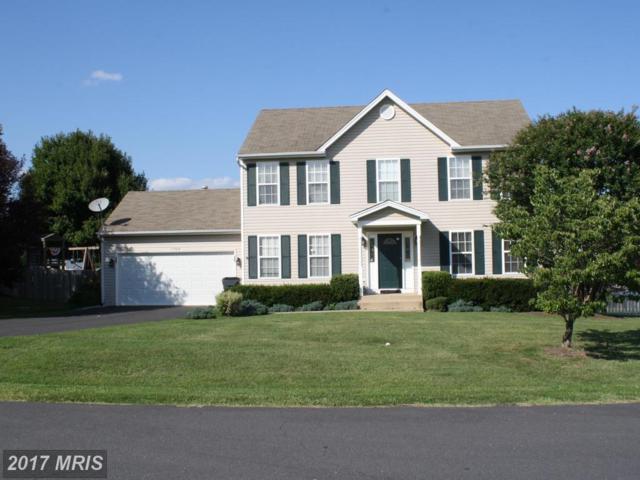 11705 Spyglass Road, Fredericksburg, VA 22407 (#SP10028587) :: Pearson Smith Realty