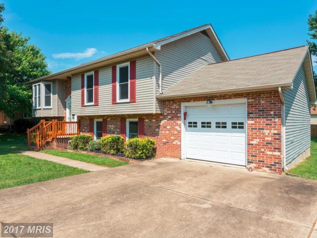3910 Blake Drive, Fredericksburg, VA 22407 (#SP10028683) :: Pearson Smith Realty