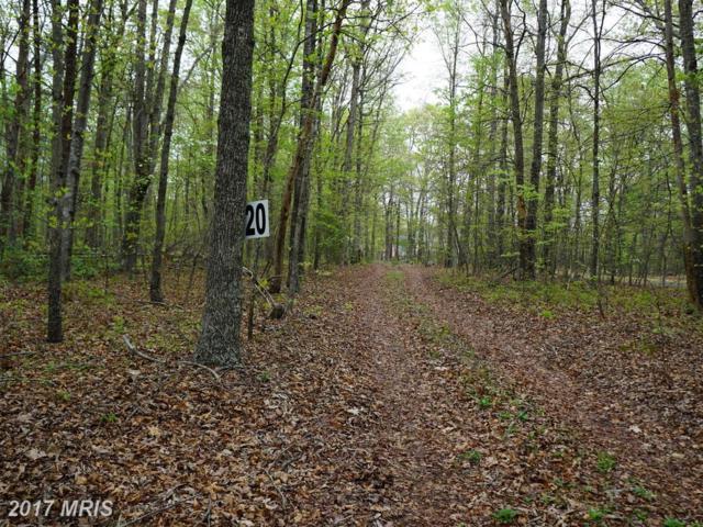 13040 Orange Plank Road, Locust Grove, VA 22508 (#SP10032655) :: RE/MAX Cornerstone Realty