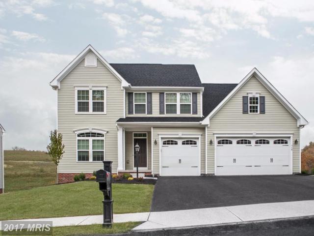 5 Piney Glade Road, Fredericksburg, VA 22407 (#SP10033058) :: RE/MAX Executives