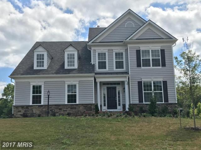 11604 Pixey Court, Spotsylvania, VA 22553 (#SP10033359) :: Pearson Smith Realty
