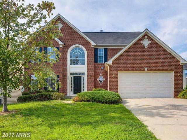 5307 Yellow Birch Drive, Fredericksburg, VA 22407 (#SP10033557) :: Pearson Smith Realty