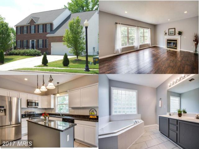 12004 Majestic Court, Fredericksburg, VA 22407 (#SP10034720) :: Pearson Smith Realty