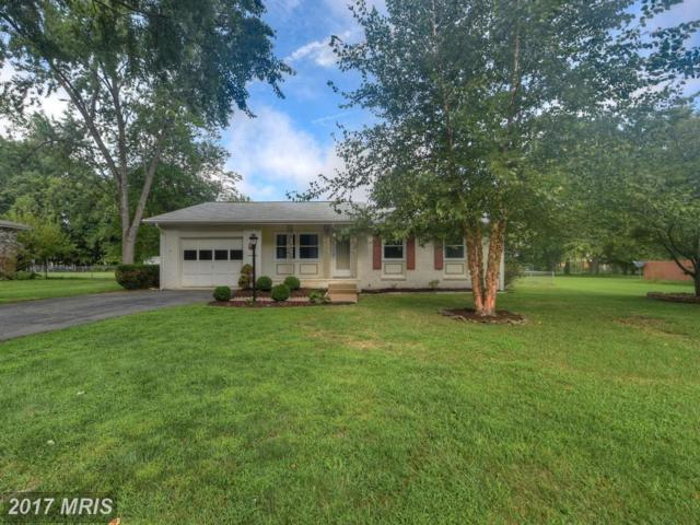 824 Salem Drive, Fredericksburg, VA 22407 (#SP10035956) :: Network Realty Group
