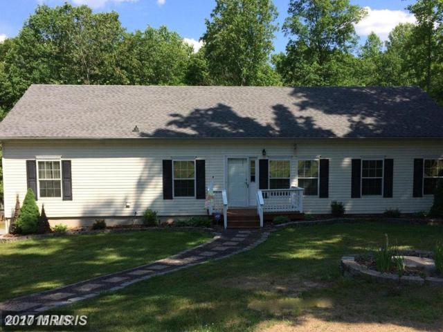 14609 Antler Road, Fredericksburg, VA 22407 (#SP10036115) :: Network Realty Group