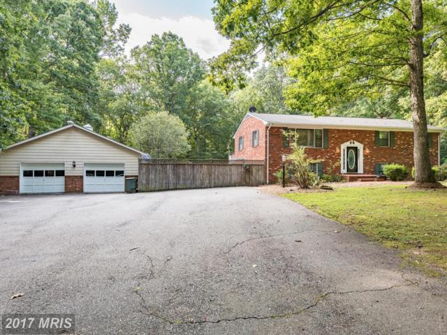 13125 Chapel Hills Drive, Fredericksburg, VA 22407 (#SP10036502) :: MidAtlantic Real Estate
