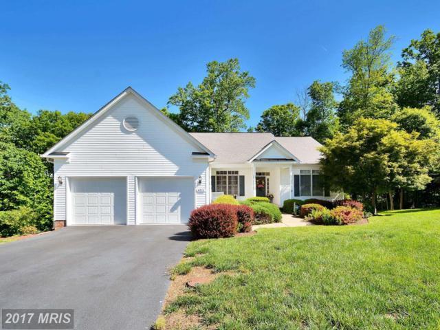 4213 Stonehaven Way, Fredericksburg, VA 22408 (#SP10039938) :: Green Tree Realty