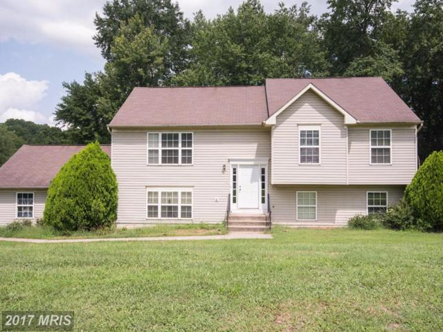 8019 Blossom Wood Court, Fredericksburg, VA 22407 (#SP10040085) :: Pearson Smith Realty