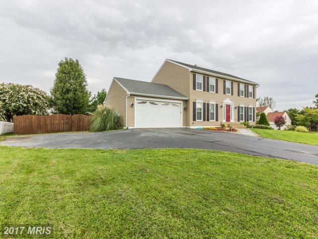 6501 Cardinal Lane, Fredericksburg, VA 22407 (#SP10040101) :: Pearson Smith Realty