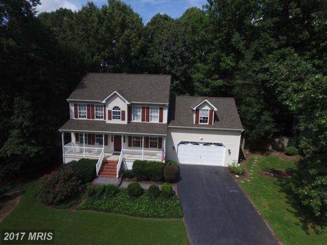 6607 Cardinal Lane, Fredericksburg, VA 22407 (#SP10044625) :: Pearson Smith Realty