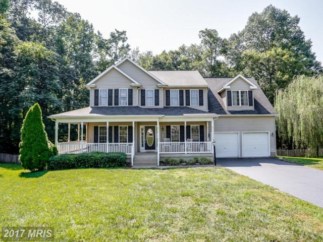 11806 Oxbow Court, Fredericksburg, VA 22408 (#SP10044831) :: LoCoMusings