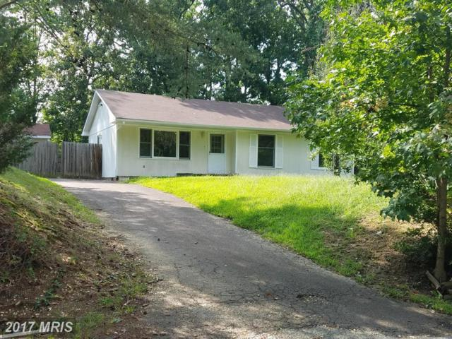 9 Schooler Court, Fredericksburg, VA 22407 (#SP10048235) :: Pearson Smith Realty