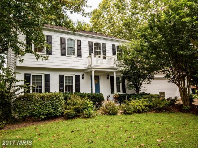 10303 Ni River Drive, Spotsylvania, VA 22553 (#SP10048917) :: Pearson Smith Realty