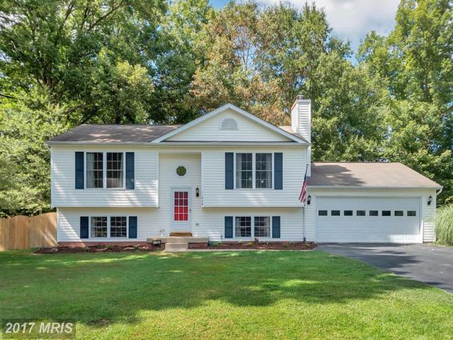 11906 Hunting Ridge Drive, Fredericksburg, VA 22407 (#SP10052413) :: United Real Estate Premier