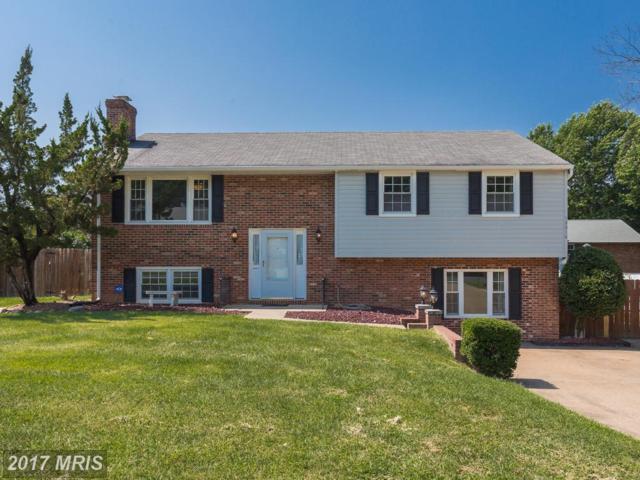 12016 Branchwater Street, Fredericksburg, VA 22407 (#SP10052667) :: Pearson Smith Realty