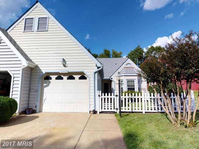 11239 Stone Mill Court, Fredericksburg, VA 22407 (#SP10053725) :: Green Tree Realty