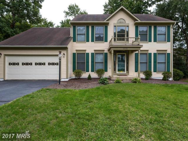 6106 Thayer Street, Fredericksburg, VA 22407 (#SP10055966) :: Pearson Smith Realty