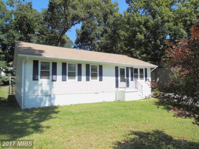 207 Sagun Drive, Fredericksburg, VA 22407 (#SP10057324) :: Pearson Smith Realty