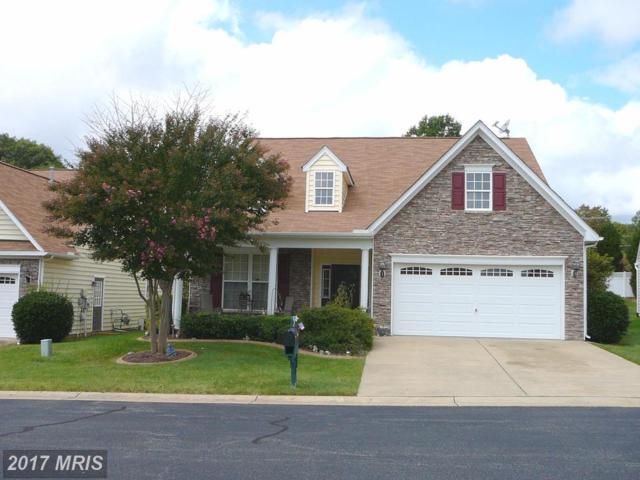 6613 Twin Cedars Court, Fredericksburg, VA 22407 (#SP10057725) :: Pearson Smith Realty