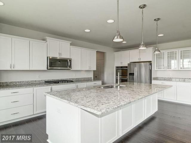 0 Aspen Highlands Drive, Spotsylvania, VA 22553 (#SP10063215) :: United Real Estate Premier