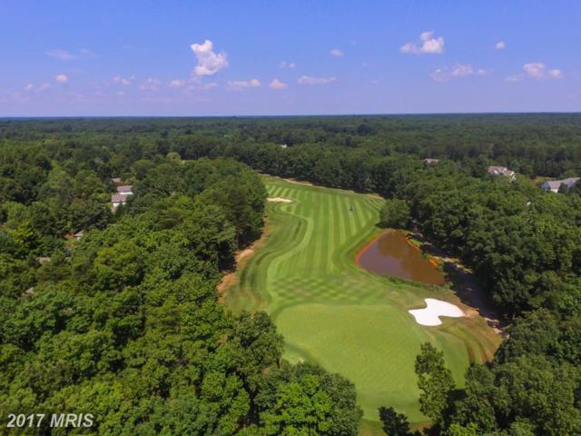 10803 Chatham Ridge Way, Spotsylvania, VA 22551 (#SP10065133) :: Blackwell Real Estate