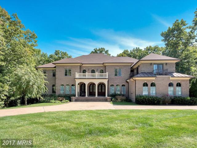 11132 Vanderbilt Cove, Spotsylvania, VA 22551 (#SP10065222) :: Blackwell Real Estate