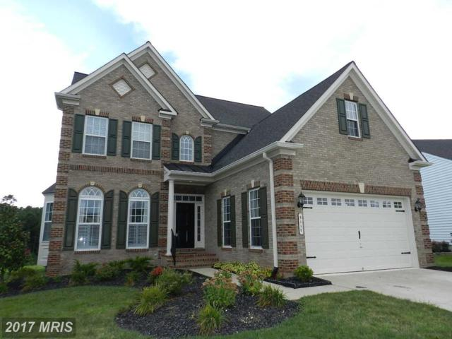 5110 Sewells Pointe Drive, Fredericksburg, VA 22407 (#SP10065664) :: Keller Williams Pat Hiban Real Estate Group