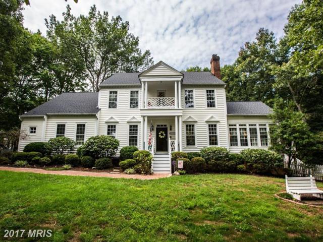8312 Lee Jackson Circle, Spotsylvania, VA 22553 (#SP10067283) :: LoCoMusings