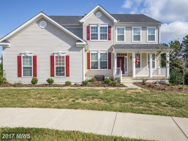 5501 Spring Bluff Court, Fredericksburg, VA 22407 (#SP10070464) :: Pearson Smith Realty