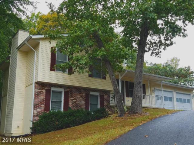 11206 Ascot Circle, Fredericksburg, VA 22407 (#SP10075905) :: LoCoMusings