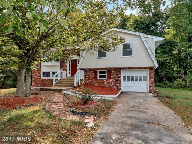 210 Creek Lane, Fredericksburg, VA 22407 (#SP10076271) :: LoCoMusings