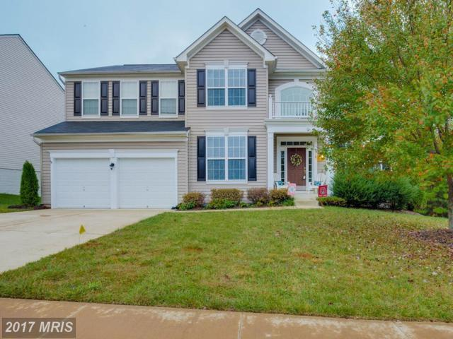 9718 Glenn Brooke Court, Fredericksburg, VA 22407 (#SP10077959) :: Pearson Smith Realty