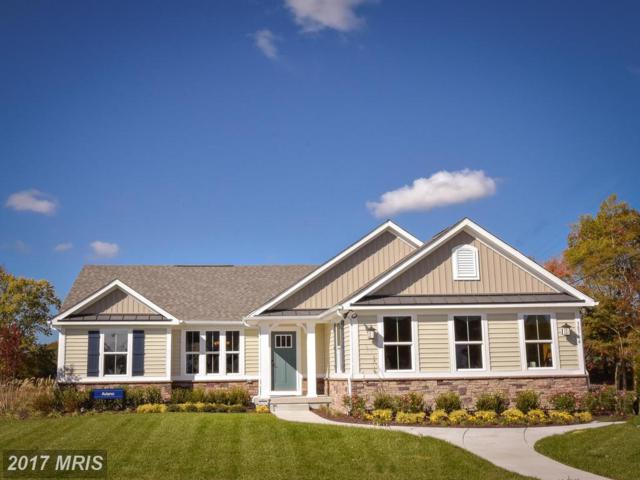 0007 Piney Glade Road, Fredericksburg, VA 22407 (#SP10079279) :: RE/MAX Cornerstone Realty