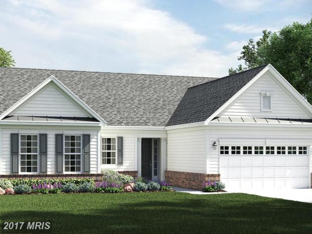 5901 New Berne Road, Fredericksburg, VA 22407 (#SP10081587) :: RE/MAX Cornerstone Realty