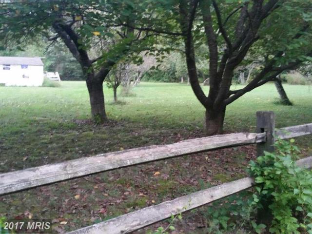 11200 Webb Lane, Locust Grove, VA 22508 (#SP10081918) :: RE/MAX Cornerstone Realty