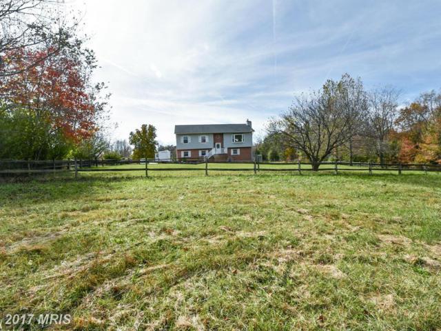 8908 Orchard Lane, Spotsylvania, VA 22551 (#SP10084487) :: Jacobs & Co. Real Estate