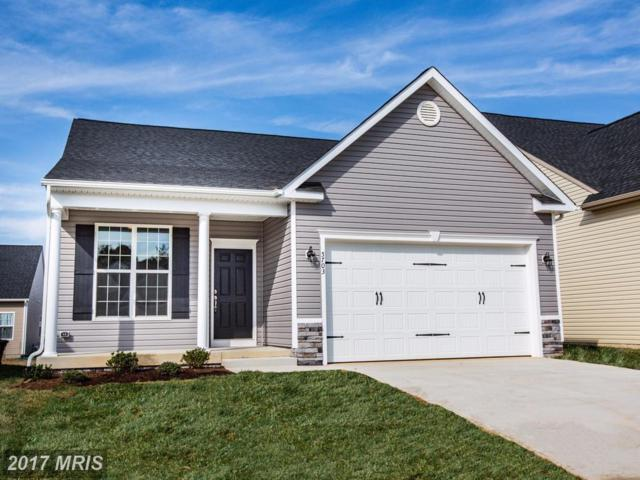 5703 Spring Arbor Circle, Fredericksburg, VA 22407 (#SP10085262) :: The Crews Team