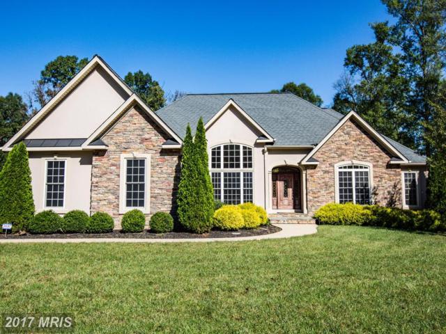 3918 Chapman Drive, Fredericksburg, VA 22408 (#SP10088735) :: LoCoMusings