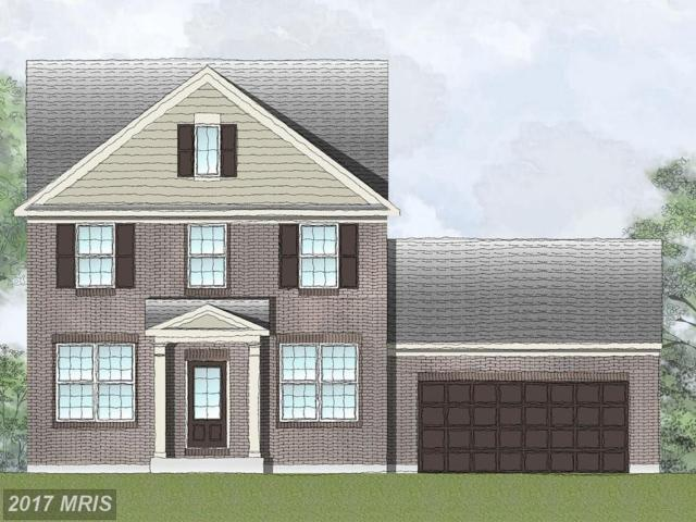 Captain Drive #101, Spotsylvania, VA 22408 (#SP10090352) :: Green Tree Realty