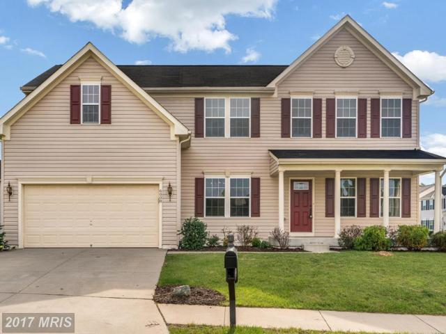 6008 Oakton Beech Lane, Fredericksburg, VA 22407 (#SP10095474) :: Pearson Smith Realty