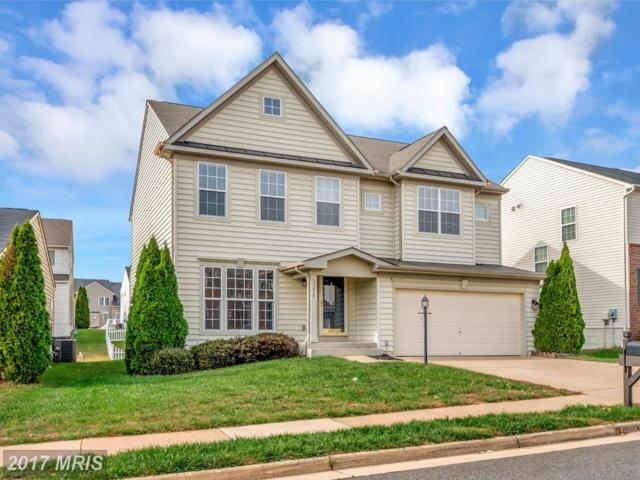 9210 Birch Cliff Drive, Fredericksburg, VA 22407 (#SP10097164) :: Pearson Smith Realty