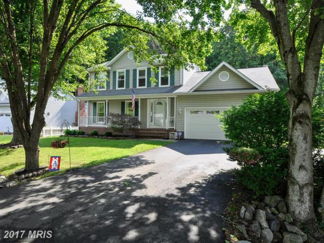 11613 Enchanted Woods Way, Fredericksburg, VA 22407 (#SP10098625) :: LoCoMusings