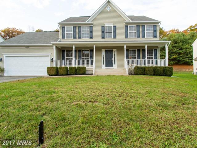 13208 Willow Point Drive, Fredericksburg, VA 22408 (#SP10099540) :: Pearson Smith Realty
