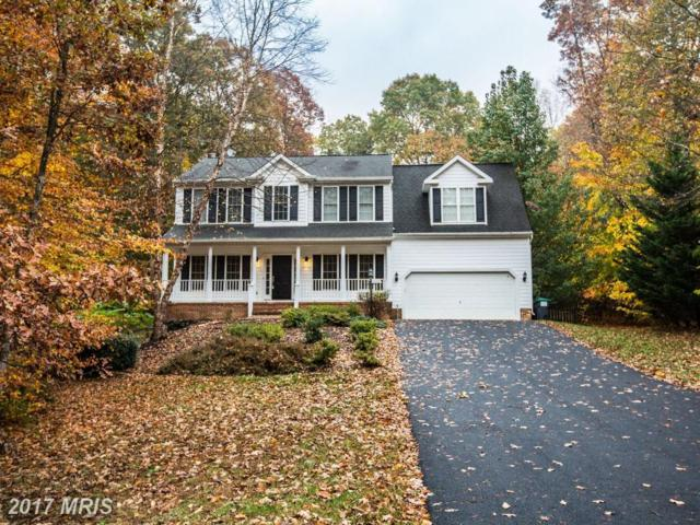 9005 Snowy Egret Court, Spotsylvania, VA 22553 (#SP10101342) :: Pearson Smith Realty