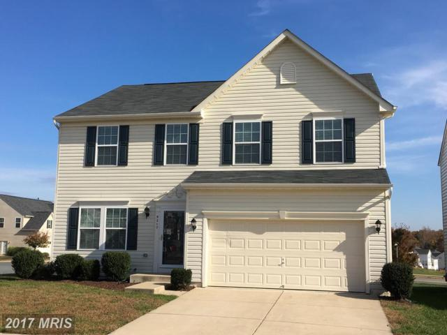 9217 Birch Cliff Drive, Fredericksburg, VA 22407 (#SP10104328) :: Pearson Smith Realty