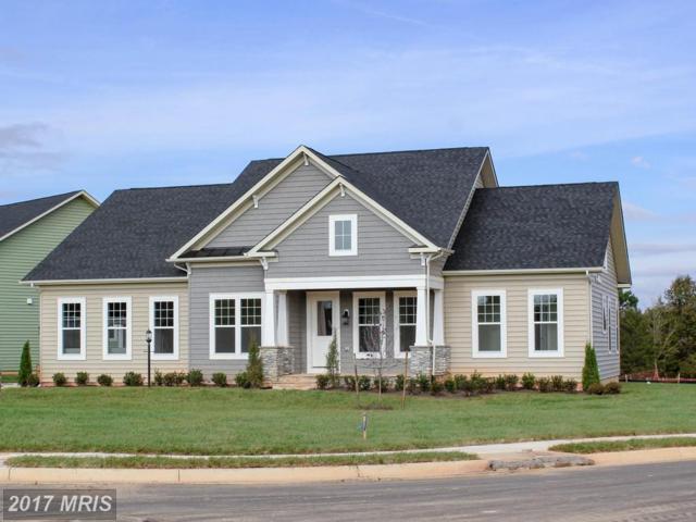 11619 Robin Woods Circle, Spotsylvania, VA 22551 (#SP10104808) :: LoCoMusings