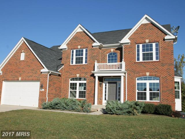 9935 Box Oak Court, Fredericksburg, VA 22407 (#SP10105098) :: Pearson Smith Realty